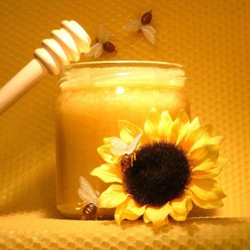 أفضل مكان لشراء العسل في اسطنبول