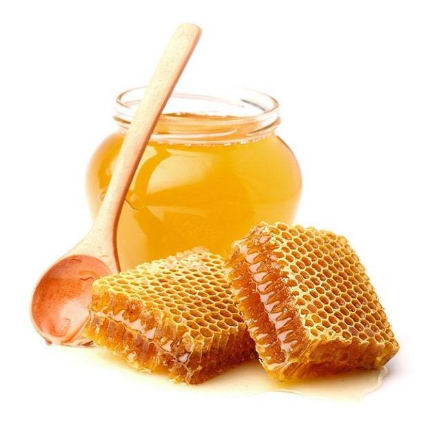 مشروع توزيع عسل نحل